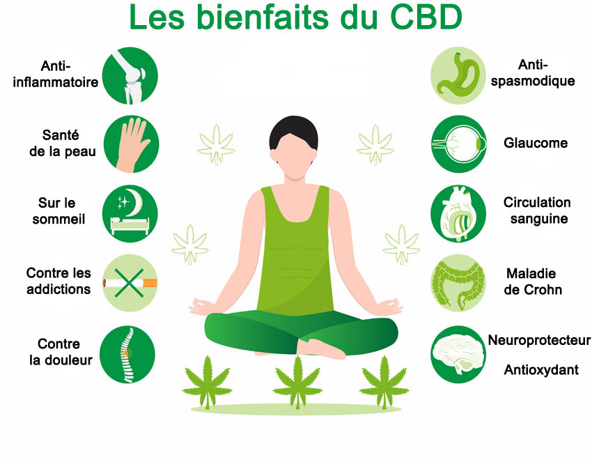 Les bienfaits du CBD selon les études scientifiques